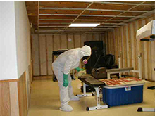 Hidden Mold: The Importance of Mold Inspections for Schools and Public Buildings