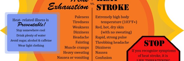 Signs of heat illness and methods to help stay cool
