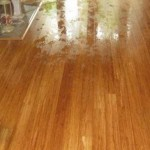 ServiceMaster floor drying services