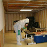 Mold Remediation in Arlington, VA