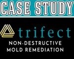 Trifect Mold Remediation Case Study