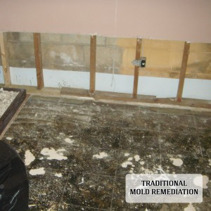 traditional approach to mold remediation
