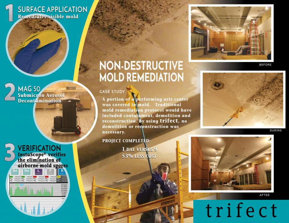Trifect mold remediation