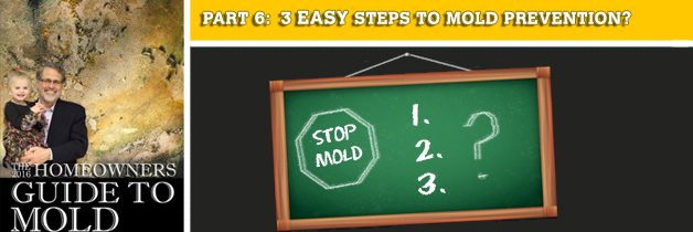 3 easy steps to mold prevention