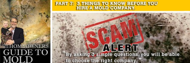 3 critical questions to ask every mold company