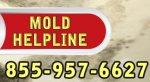 mold helpline