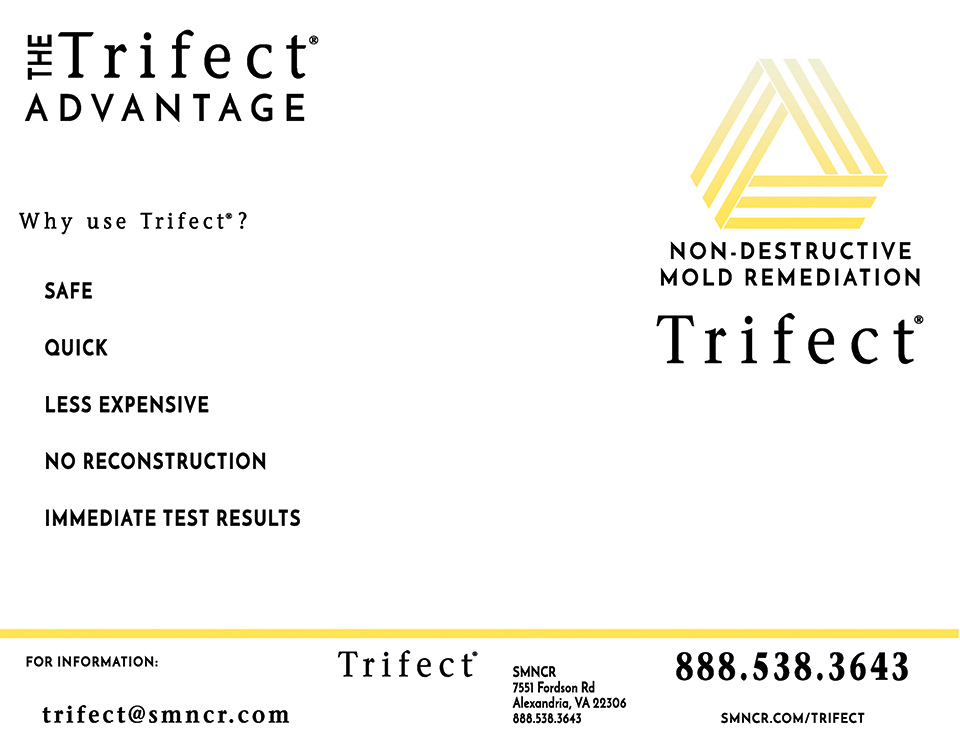 Trifect mold removal brochure page 1
