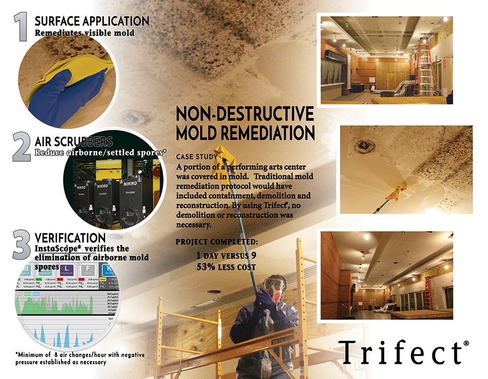 Trifect mold removal brochure page 2