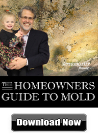 Mold Guide - ServiceMaster NCR