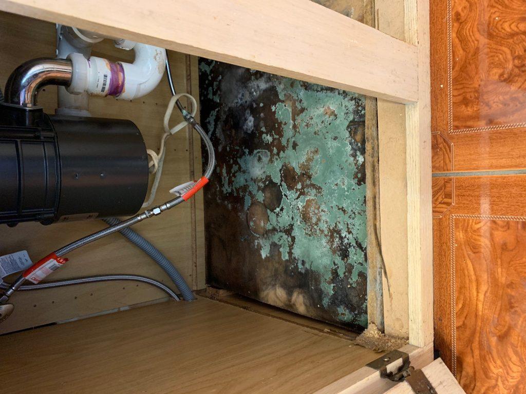 Mold Remediation Service Alexandria, VA