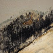 Mold Removal Process of ServiceMaster NCR