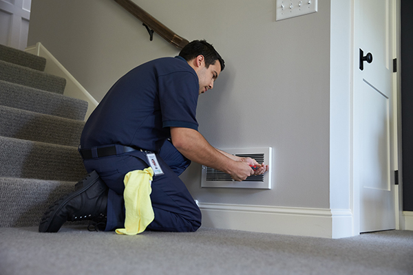 Mold Remediation Services in Tysons, VA